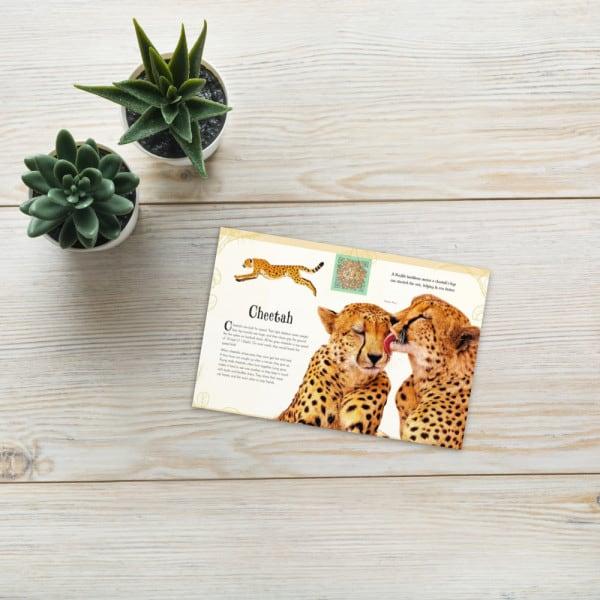 Standard postcard 4x6 5fd2d71a8f06b
