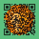 Zoptiks_abdomen